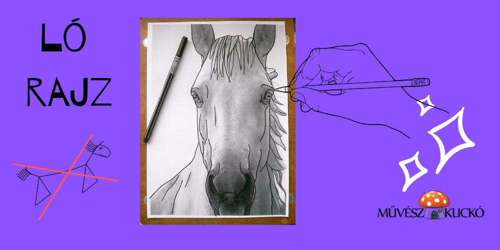 ló rajz_kkk
