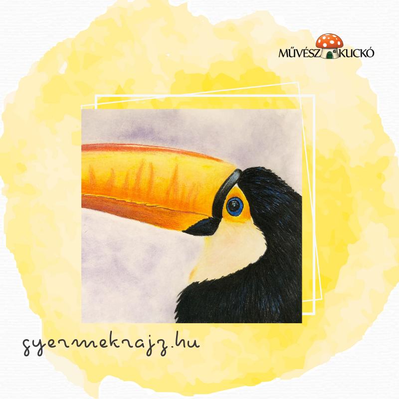 színes ceruzás rajztanfolyam online gyerekekknek6